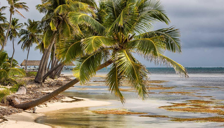 Belize - Think-Belize-AmbergrisCaye-638278364-Ed-Ni-Photo-Copy