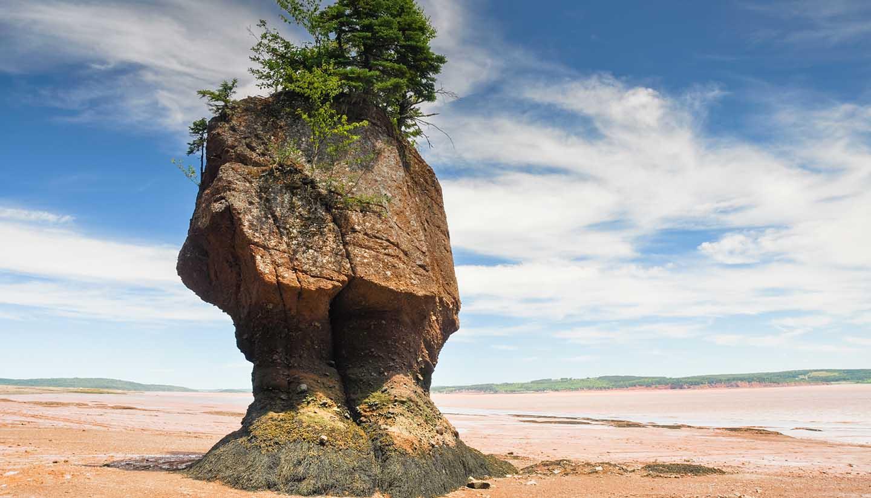 New Brunswick - Hopewell Rocks at low tide, Fundy bay (Canada)