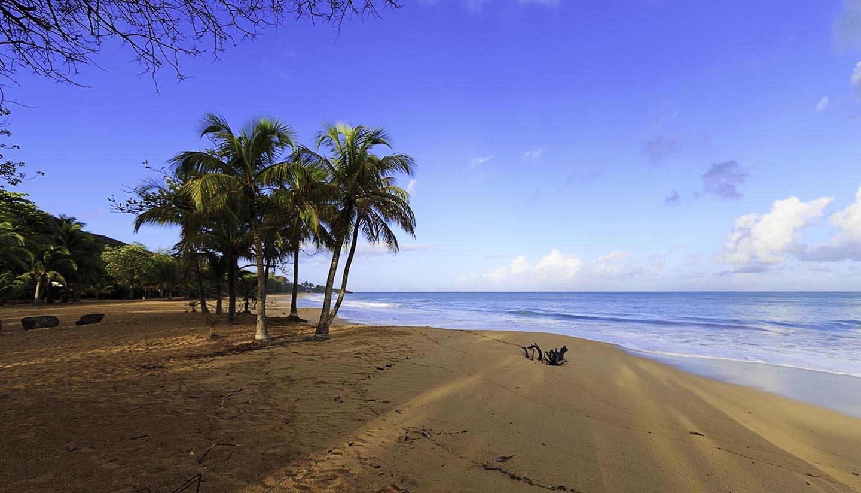 Französisch-Polynesien - La Perle en Guadeloupe