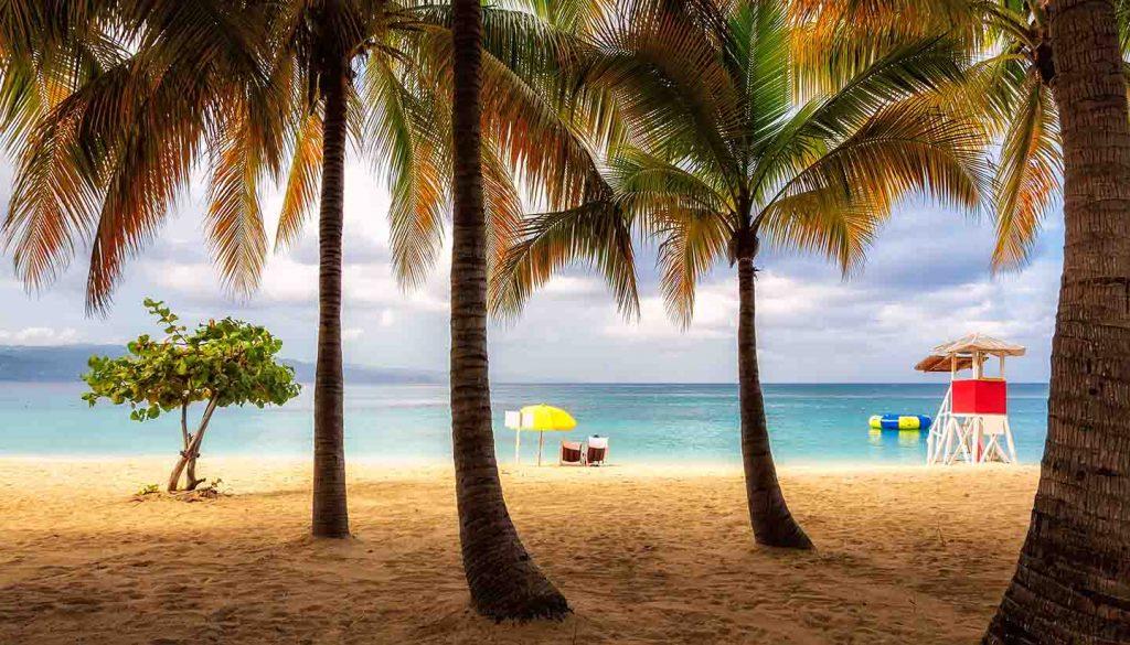 Jamaika - Beach in Jamaica with tall palm tree on Caribbean sea