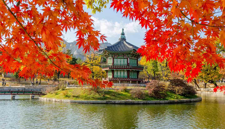 Südkorea - Autumn of Gyeongbokgung Palace in Seoul ,Korea