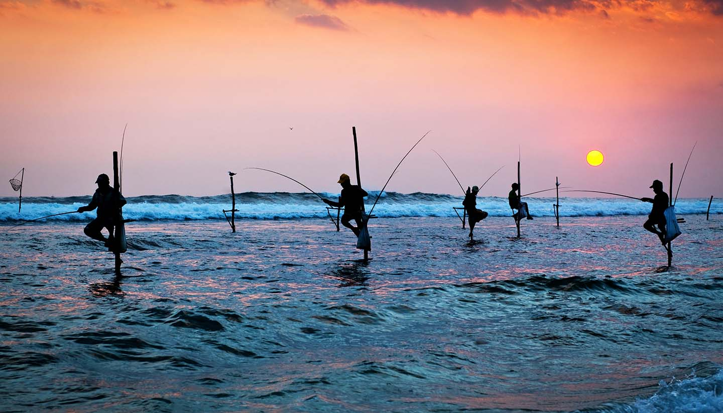 Sri Lanka - traditional stilt fishermen at the sunset nea