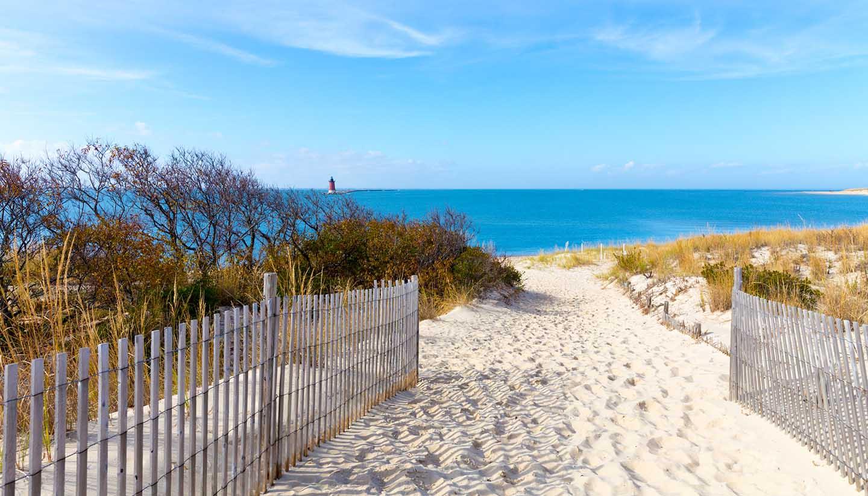Delaware - Delaware Coastal View