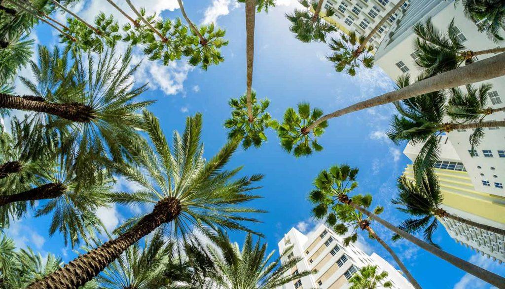 Florida - Think-USA-Florida-Miami-509996492-Rauluminate-copy