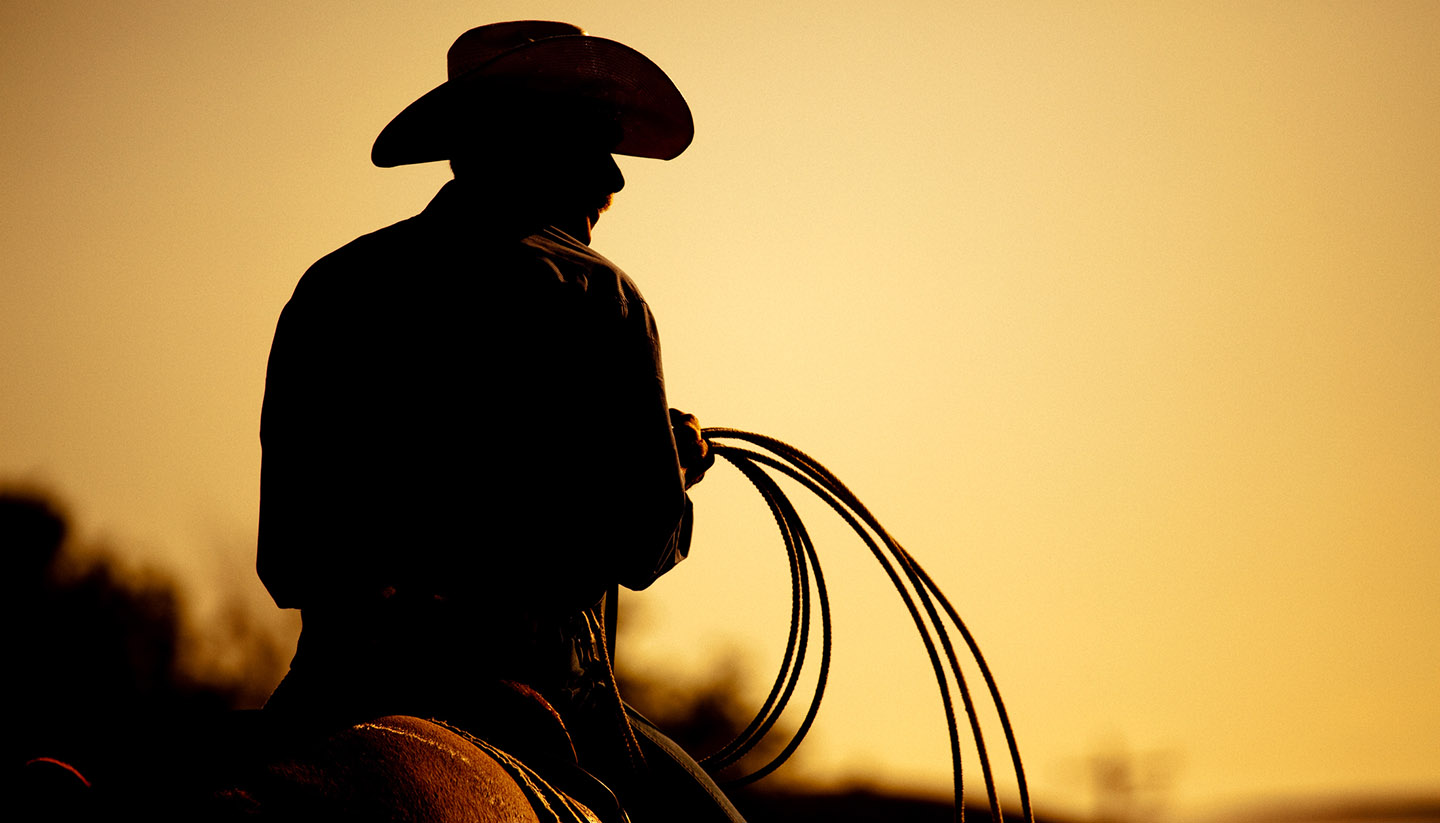 Wyoming - rodeo cowboy silhouette