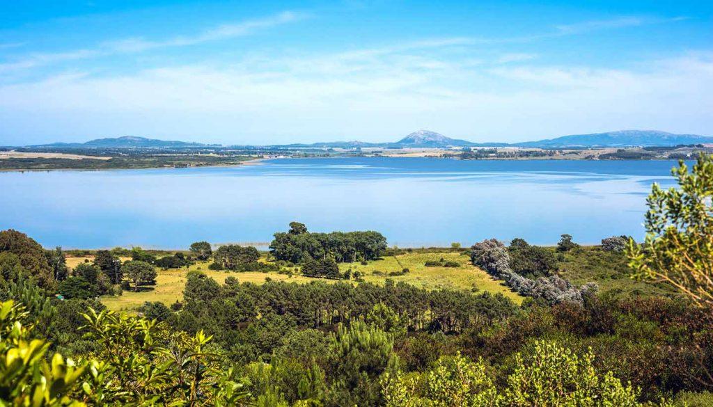 Uruguay - Lagoon of the Willow (Laguna del Sauce), Maldonado, Uruguay