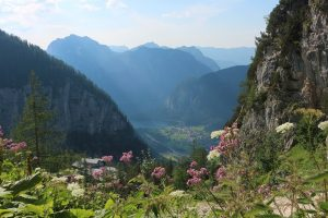 Ob heimische Blumen, schöne Felsschluchten, tolle Bergtouren oder schöne Seen. Tirol hat für jeden etwas zu bieten.